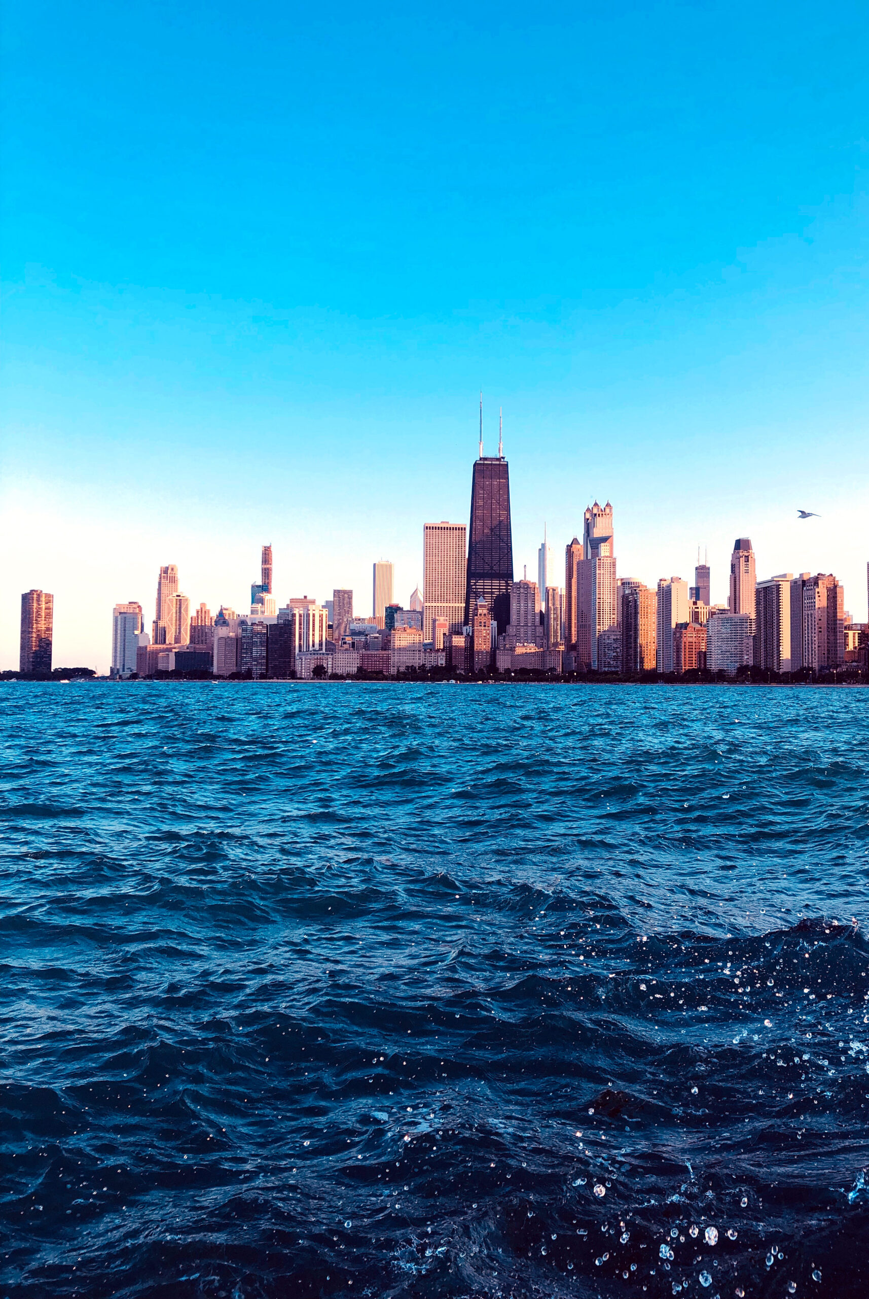 chicago, community, consciousness, empowerment